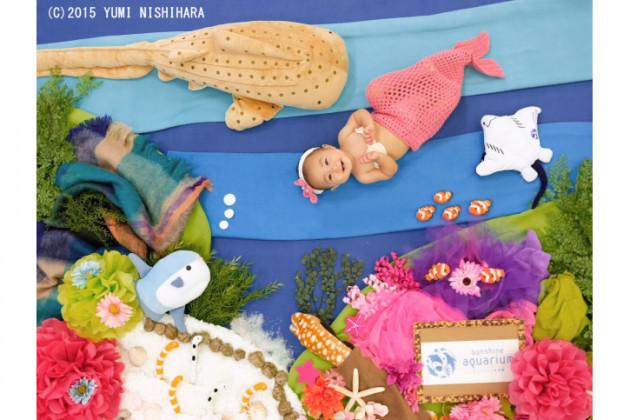 サンシャイン水族館コラボ撮影会×おひるねアート